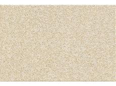罗马岗石 600x900mm